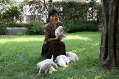 S. Korea's ex-president hounded over dumped dogs