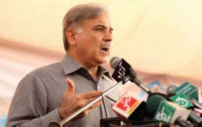 We will be able to lend electricity to Modi by end of 2017, claims Shahbaz