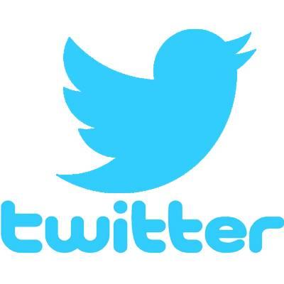 Twitter dips