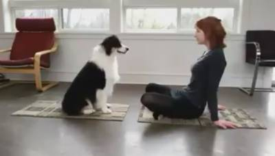 Watch: Amazing workout of a dog with his owner