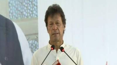Increasing loans are putting burden on Pakistan: Imran Khan