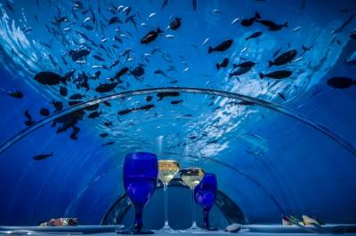 World's biggest under water restaurant
