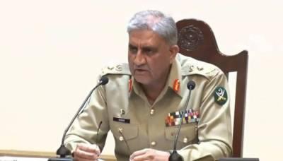Cannot eliminate terrorism by blaming others, ignoring responsibilities: COAS Bajwa