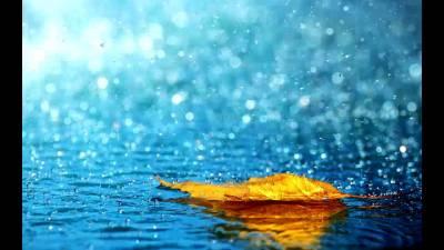 Rain spell expected Nationwide over weekend: Met office