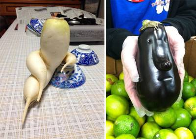Strangely shaped fruits & vegetables