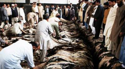 Eidul Azha: Govt bars 65 proscribed outfits from collecting hides
