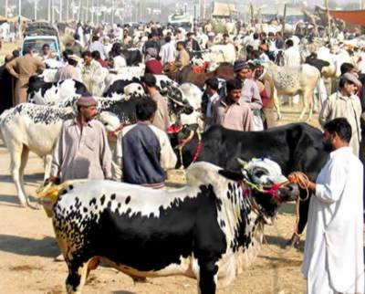 2nd day of Eid-ul-Azha celebrated across country