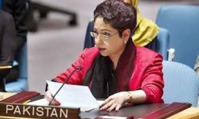 Pakistan urges international community to resolve Kashmir, Palestine disputes