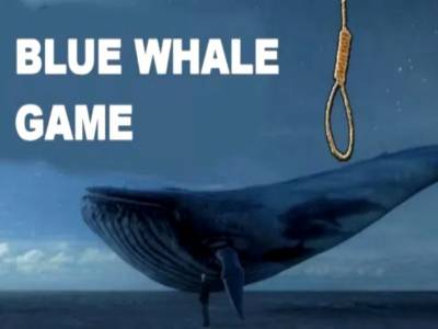 Pakistani youngster develops anti-Blue Whale Game