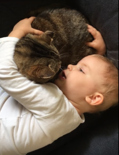 Watch: toddler shares secret with cat