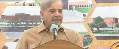 Multan: CM Punjab inaugurates speedo bus service
