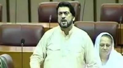 Social media 'propaganda campaign' targets me: PTI MNA maintains