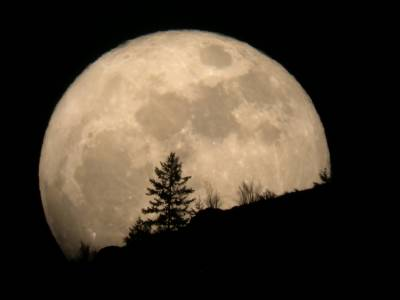New Year's supermoon to light up skies tonight