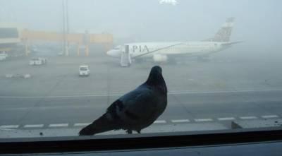 Dense fog disrupts road, rail and air traffic in Punjab
