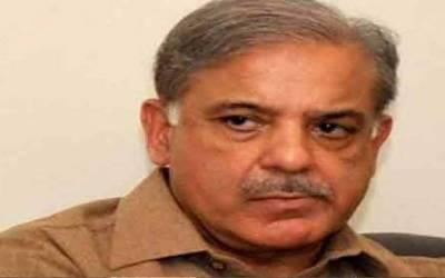 Shehbaz bars PML-N members to issue statements against defectors