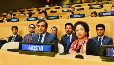 UN elects Pakistan as member of NGO committee