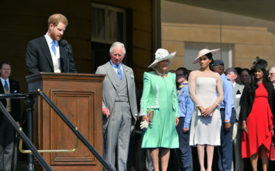 Prince Harry attacked by a bumblebee, forgot speech