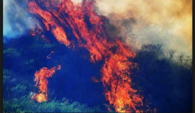 Raging fires continues in Margalla Hills