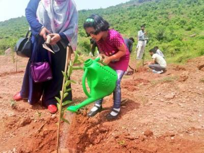 'Plant for Pakistan' campaign launched