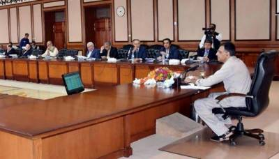 ECC decides against proposed 46pc hike in gas prices: Fawad