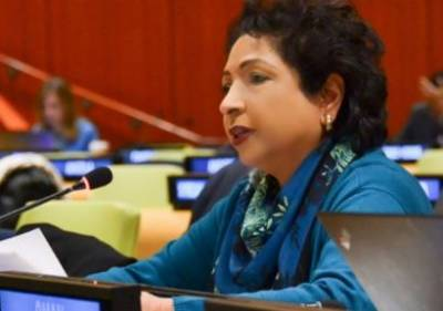 Pakistan stresses diplomatic surge to settle Afghan conflict: Maleeha Lodhi