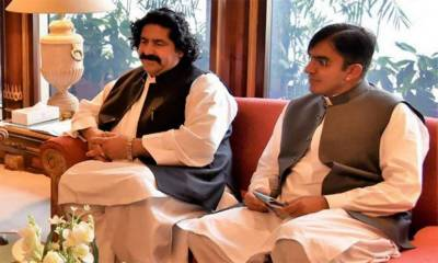 Federal Cabinet orders removal of Ali Wazir, Mohsin Dawar's names from ECL