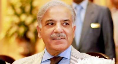 LHC accepts Shahbaz's bail plea in Ashiana, Ramzan Sugar Mills cases
