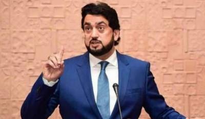 44 people affiliated with banned outfits taken into protective custody: Shehryar