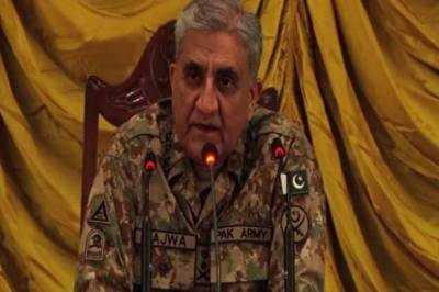 Pakistan on path to enduring peace and stability: COAS Bajwa