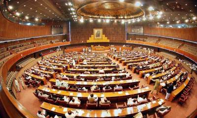 National Assembly passes federal budget, approves finance bill 2019-20
