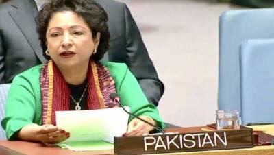 Pakistan calls for global efforts to break terrorism, organized crime nexus