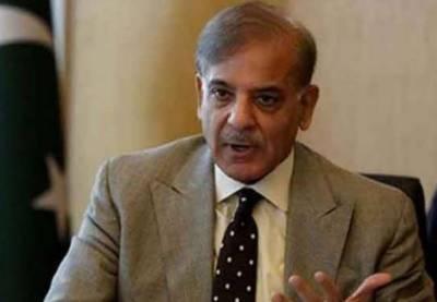 Shehbaz calls for decisive action to India's decisions regarding IoK