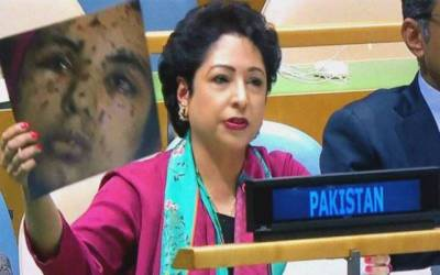 Dr Maleeha Lodhi briefs UNGA president on grave situation in Occupied Kashmir