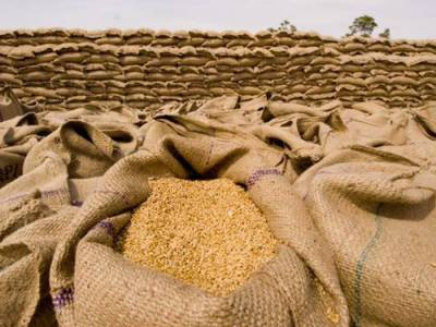 ECC approves import of 0.3m tons of wheat to overcome flour crisis