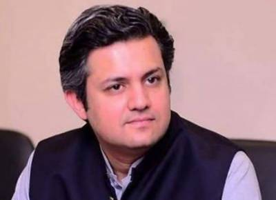 Govt decided to privatise PSM as it became a 'white elephant': Hammad Azhar